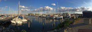 Hafen-Panorama