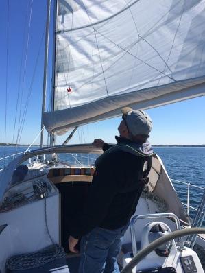 Der Skipper checkt die Segel