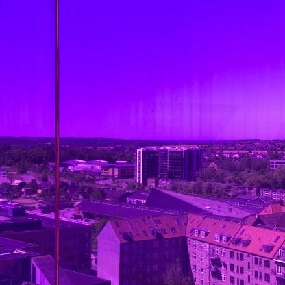 Rainbow violett