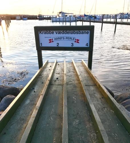 Krabbenwettlaufbahn auf Årø