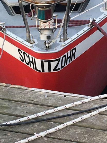 Schlitzohr